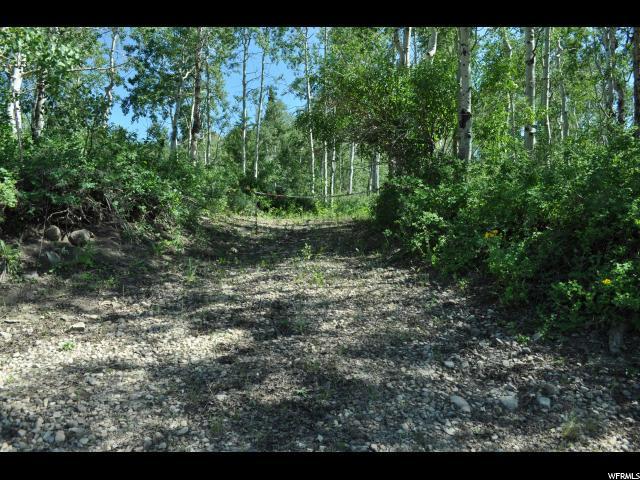 10622 Cottonwood Ln, Heber City, UT 84032 (MLS #1616999) :: High Country Properties