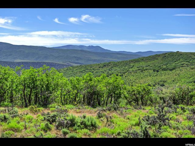 1751 N Ridge Rd, Wanship, UT 84017 (MLS #1617233) :: High Country Properties