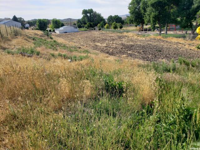 160 N Main Main N, Mayfield, UT 84643 (MLS #1617486) :: Lawson Real Estate Team - Engel & Völkers