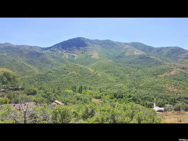 81 N Pioneer Fork Rd E, Emigration Canyon, UT 84108 (#1618401) :: Colemere Realty Associates