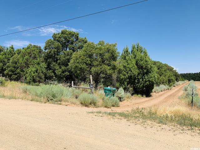 15 E County Rd 384, Monticello, UT 84535 (#1618404) :: Exit Realty Success