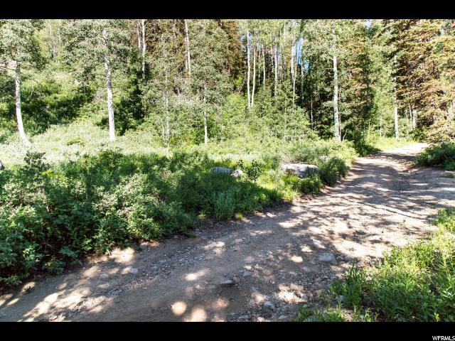 2506 W Spruce Rd, Midway, UT 84049 (MLS #1618612) :: High Country Properties