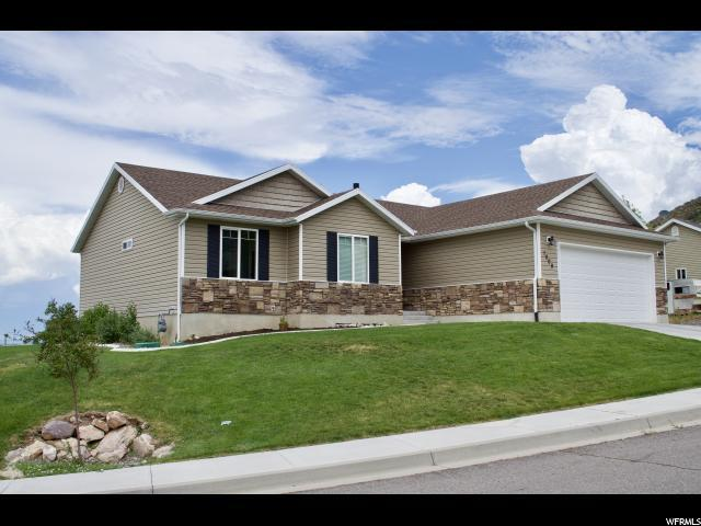 1009 E Bing St, Santaquin, UT 84655 (#1619156) :: Red Sign Team