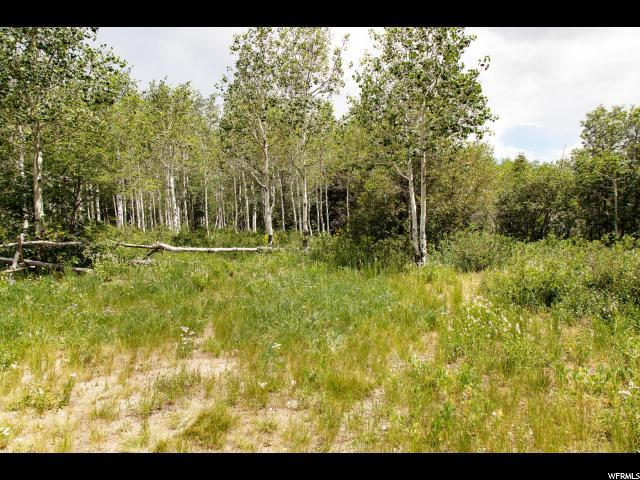 78 Stagecoach Ests, Park City, UT 84098 (MLS #1619494) :: High Country Properties