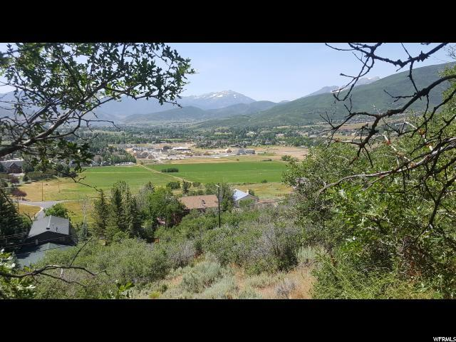 283 Jung Frau Hill Rd, Midway, UT 84049 (MLS #1619882) :: High Country Properties