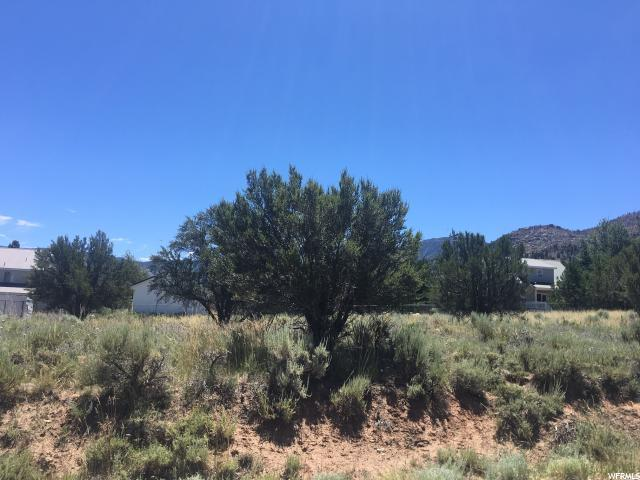 137 S Lloyd Canyon Rd, Pine Valley, UT 84781 (#1619977) :: Red Sign Team