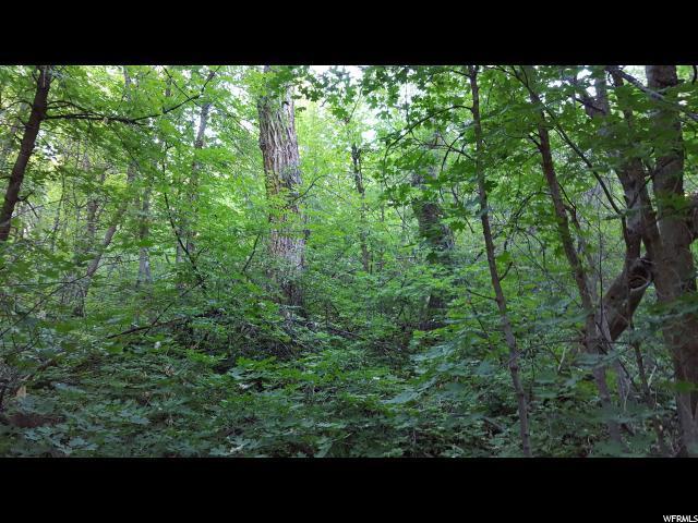 13 Birch Creek Dr - Photo 1