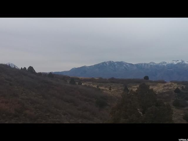 7342 E Valley View Dr, Heber City, UT 84032 (MLS #1621460) :: High Country Properties