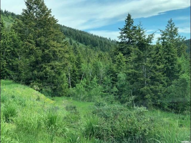 111 Lot 111 Big Bear, Lava Hot Springs, ID 83246 (#1621686) :: Colemere Realty Associates