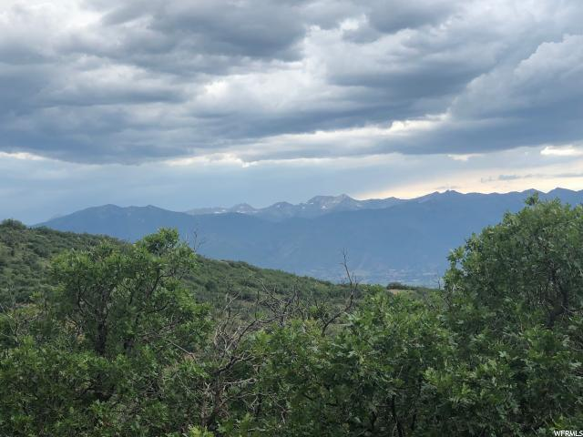 2164 S Westview Dr E, Heber City, UT 84032 (MLS #1622416) :: High Country Properties