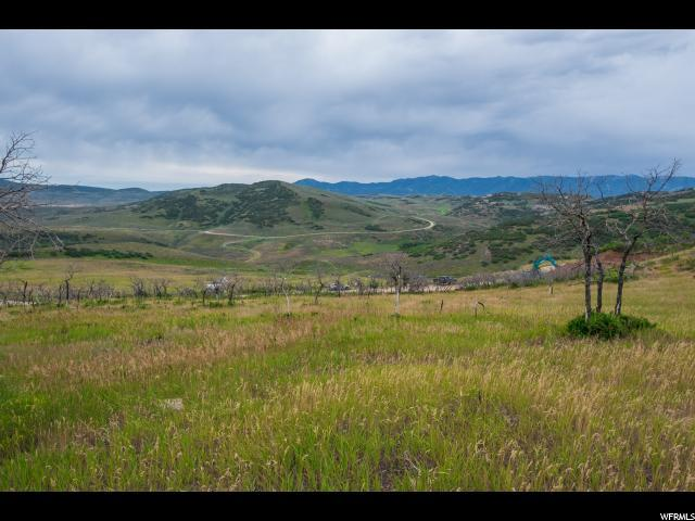Address Not Published, Wanship, UT 84017 (MLS #1622610) :: High Country Properties
