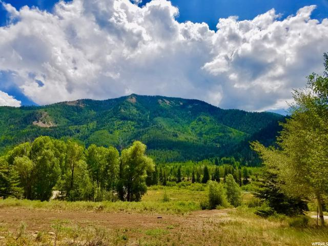 9 Tom Paine Ln, Oakley, UT 84055 (MLS #1623330) :: High Country Properties