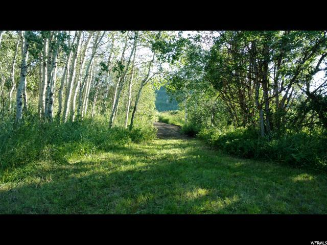 9777 E Clubhouse Rd, Heber City, UT 84032 (MLS #1623482) :: High Country Properties