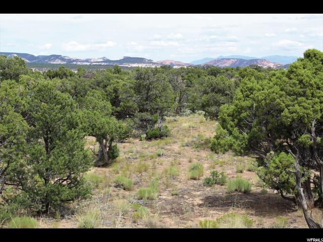 1742 E Black Boulder Mesa Rd, Boulder, UT 84716 (#1623487) :: Colemere Realty Associates