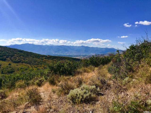 2151 Westview Dr, Heber City, UT 84032 (#1630833) :: Colemere Realty Associates