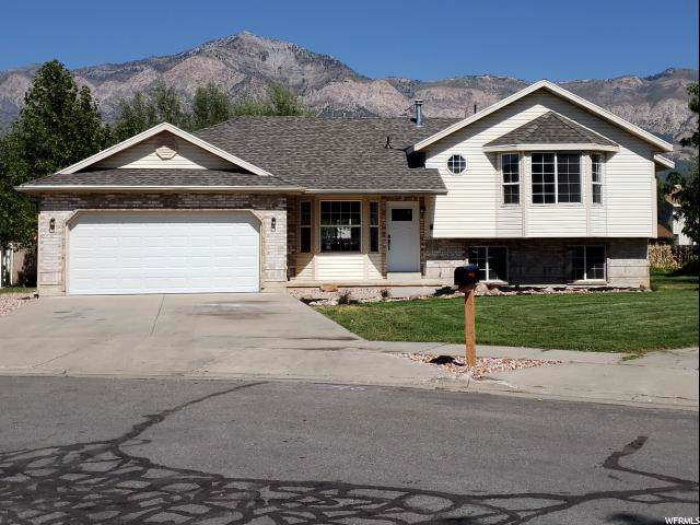 2346 N 500 W, Harrisville, UT 84414 (#1631572) :: The Canovo Group
