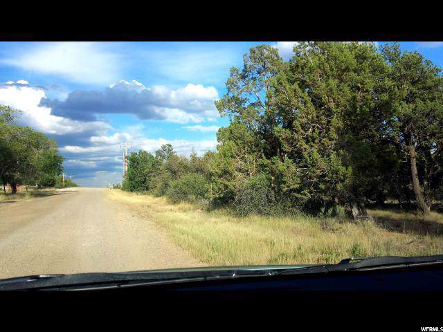 330 S 3.3 MILES S. CR 312, Monticello, UT 84535 (#1633219) :: Doxey Real Estate Group