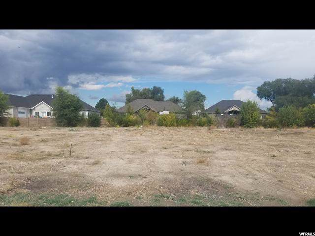 1012 W River Pass Ln S, South Jordan, UT 84095 (#1633604) :: Doxey Real Estate Group