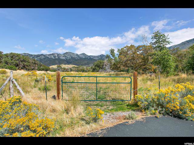 630 N Whitby Woodland Dr, Alpine, UT 84004 (#1633927) :: Red Sign Team
