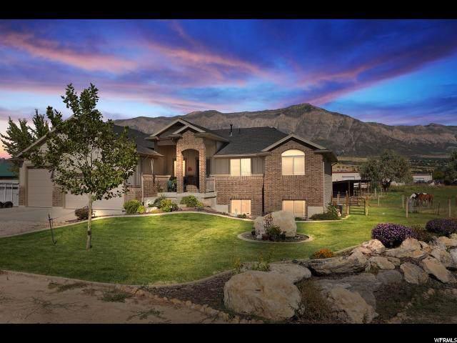 3664 N Higley Rd W, Farr West, UT 84404 (MLS #1634365) :: Lawson Real Estate Team - Engel & Völkers