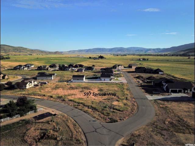 597 Spruce Way, Francis, UT 84036 (#1634427) :: Big Key Real Estate
