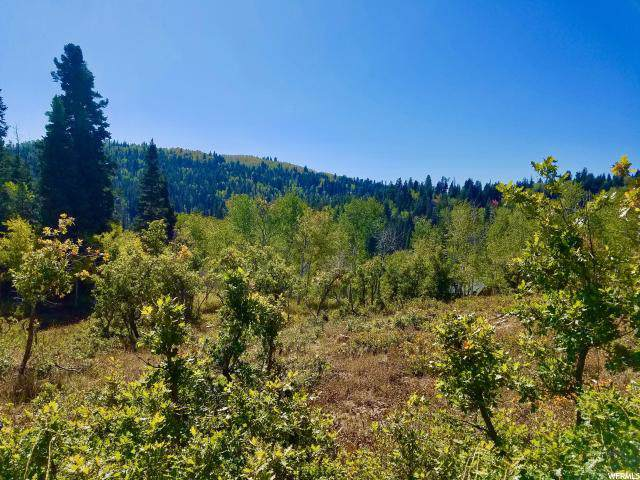 1021 Elk Rd, Wanship, UT 84017 (MLS #1635146) :: High Country Properties