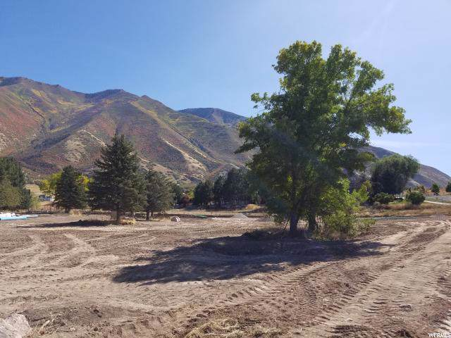 1889 S Main St, Mapleton, UT 84664 (#1635194) :: Colemere Realty Associates