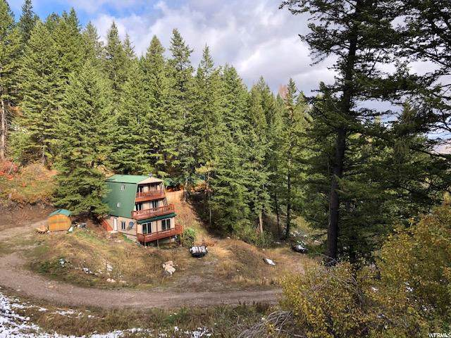 14325 S Wolverine, Lava Hot Springs, ID 83246 (#1635747) :: Colemere Realty Associates