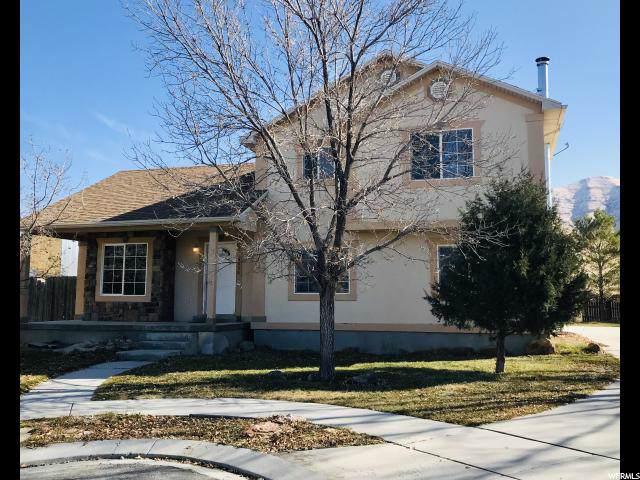 4058 N White Pine E, Eagle Mountain, UT 84005 (#1639247) :: Doxey Real Estate Group