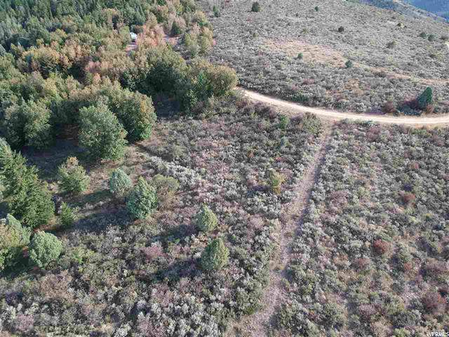 Address Not Published, Lava Hot Springs, ID 83246 (#1640349) :: Doxey Real Estate Group
