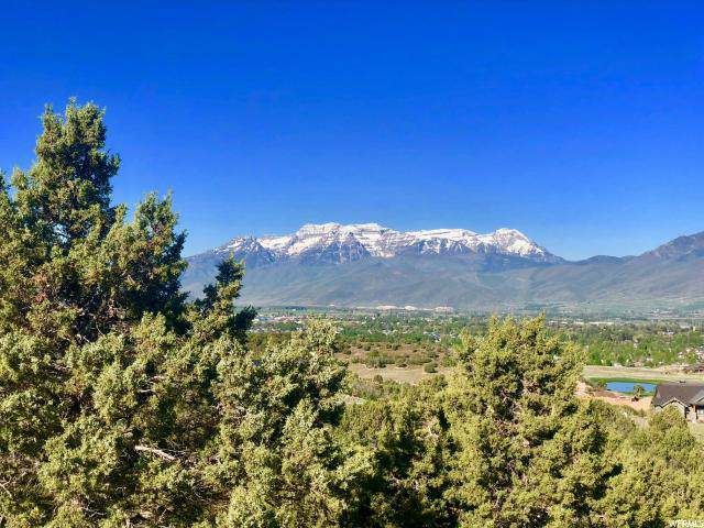 2366 E Flat Top Mtn Dr (Lot 91), Heber City, UT 84032 (#1641045) :: The Fields Team