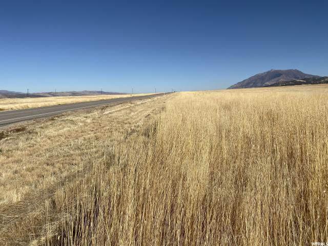 5500 S Hwy 28 W, Nephi, UT 84648 (#1641420) :: Big Key Real Estate