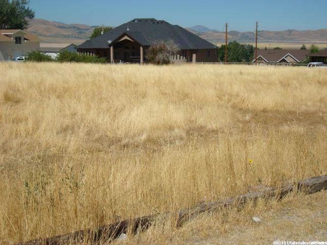 350 E 150 N, Mona, UT 84645 (#1641919) :: Big Key Real Estate