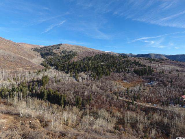 1022 North Fork Rd, Fairview, UT 84629 (#1642470) :: Action Team Realty