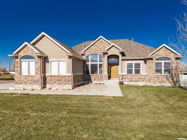 377 E Hollywood Ct S, Grantsville, UT 84029 (#1642840) :: Big Key Real Estate