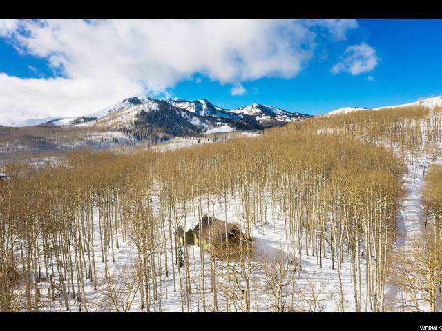 1548 W Lost Moose Ln 52&53, Midway, UT 84049 (#1642999) :: Big Key Real Estate