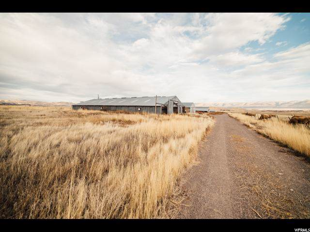 Address Not Published, Moroni, UT 84646 (#1643476) :: Doxey Real Estate Group