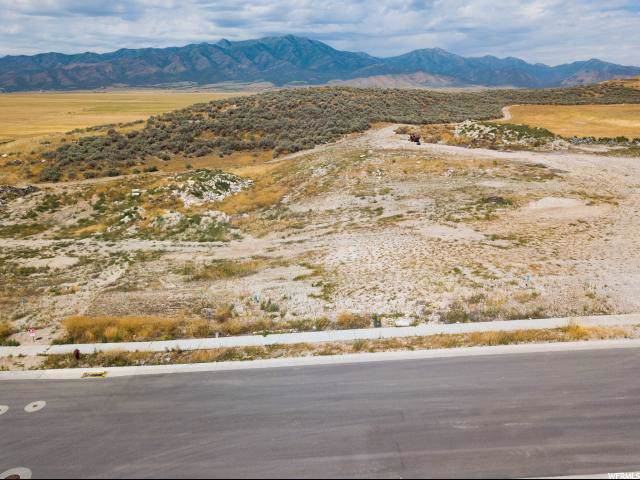 7087 N Slick Rock Way, Eagle Mountain, UT 84005 (#1645183) :: Colemere Realty Associates