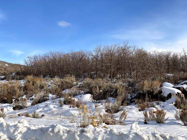 11503 N Soaring Hawk Ln, Hideout, UT 84036 (MLS #1645587) :: High Country Properties