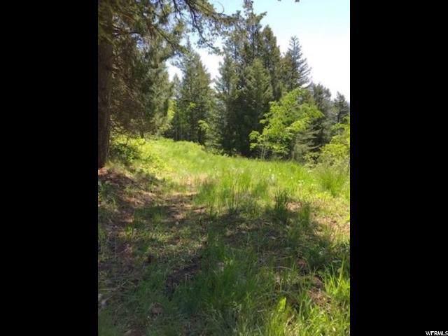 0 Grouse Run, Lava Hot Springs, ID 83246 (#1645990) :: The Fields Team