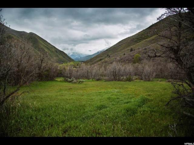 466 Hobble Creek Cyn - Photo 1