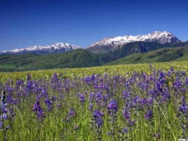 5585 E Highland Vw N, Eden, UT 84310 (#1646586) :: Bustos Real Estate | Keller Williams Utah Realtors
