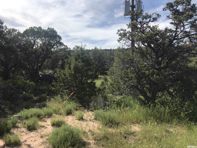 1461 N 21300 W, Altamont, UT 84001 (#1647261) :: The Fields Team