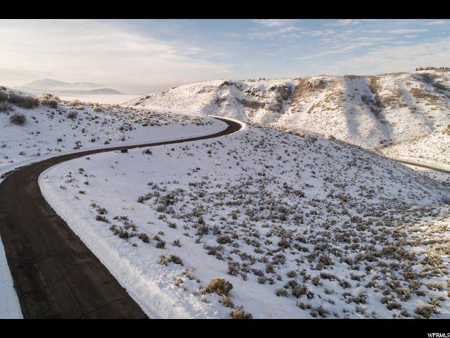 1007 E Canyon Gate Rd, Park City, UT 84098 (#1647994) :: Colemere Realty Associates