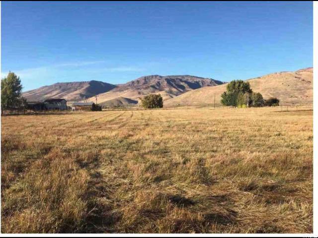 Address Not Published, Huntsville, UT 84317 (#1648571) :: Bustos Real Estate | Keller Williams Utah Realtors