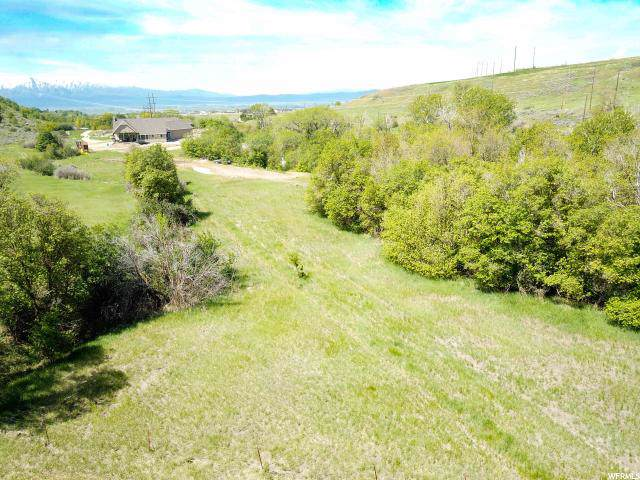 1481 Canyon Rd, Smithfield, UT 84335 (#1648930) :: Colemere Realty Associates