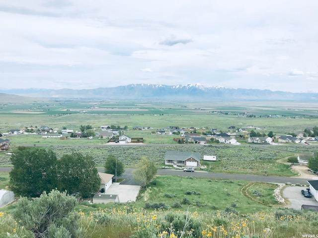 11040 N Cullimore Ln W, Tremonton, UT 84337 (#1650747) :: Exit Realty Success