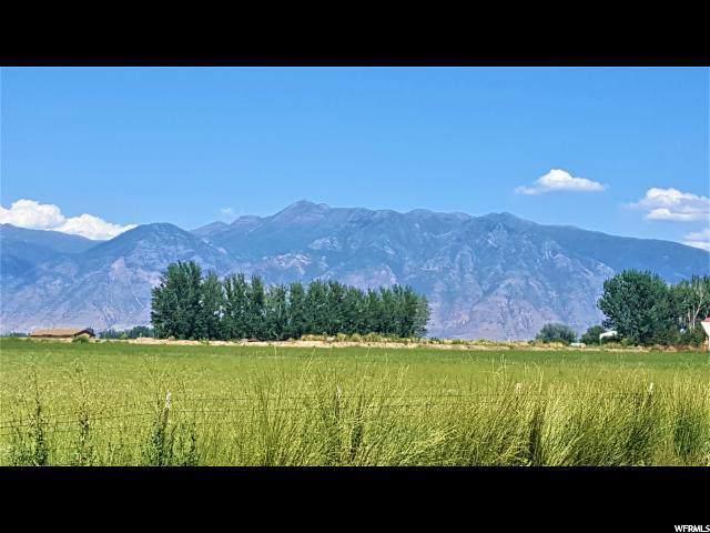 4800 W 6400 S, Benjamin, UT 84660 (#1651740) :: Utah City Living Real Estate Group