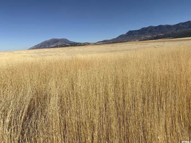 Address Not Published, Nephi, UT 84648 (#1652083) :: Bustos Real Estate | Keller Williams Utah Realtors