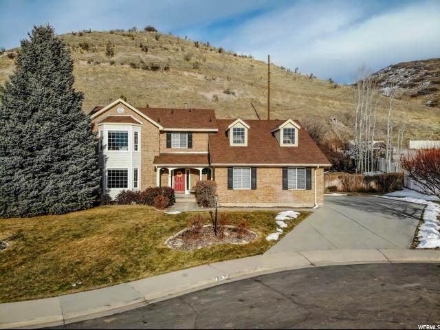 1676 N Oak View Cir, Orem, UT 84097 (#1654768) :: Big Key Real Estate
